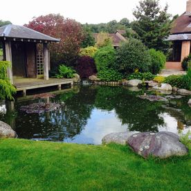 Carter's ponds & landscapes - ponds and waterfalls
